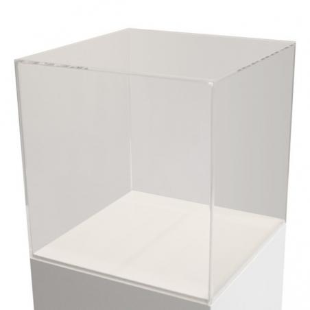 Skyddsmonter av plexiglas 50 x 50 x 50 cm (LxBxH)