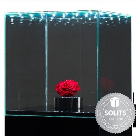 Skyddsmonter av glas med integrerad led-belysning 30 x 30 x 30 cm